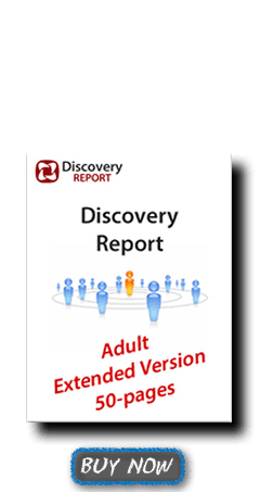 step 1 - take a disc personality profile
