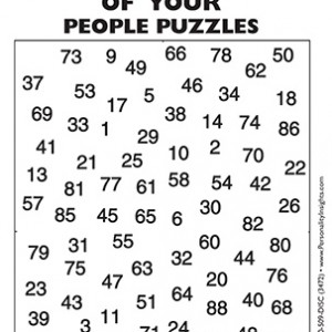 Making Sense Of Your People Puzzle – Mini Size Handout To Go With DVD (single)