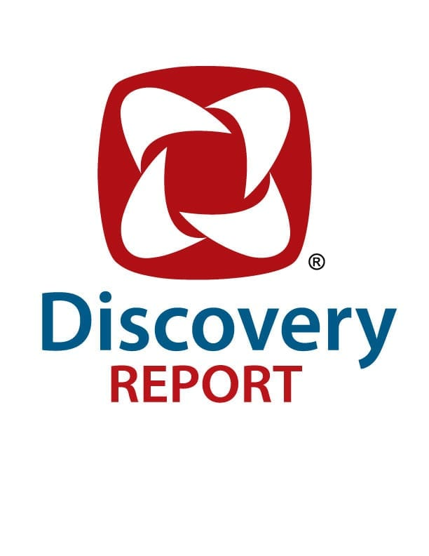 Discovery Report DISC Profiles