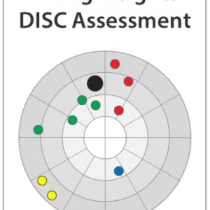 Hiring Insights DISC Profile (online Assessment And Report)