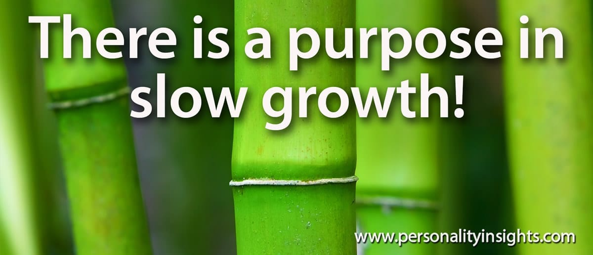 Tip: There Is Purpose In Slow Growth!