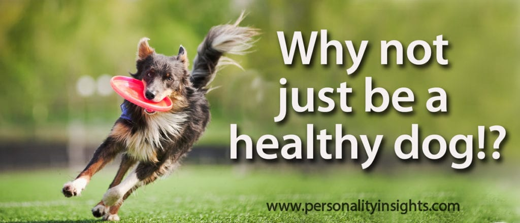 Tip: Why not just be a healthy dog?!
