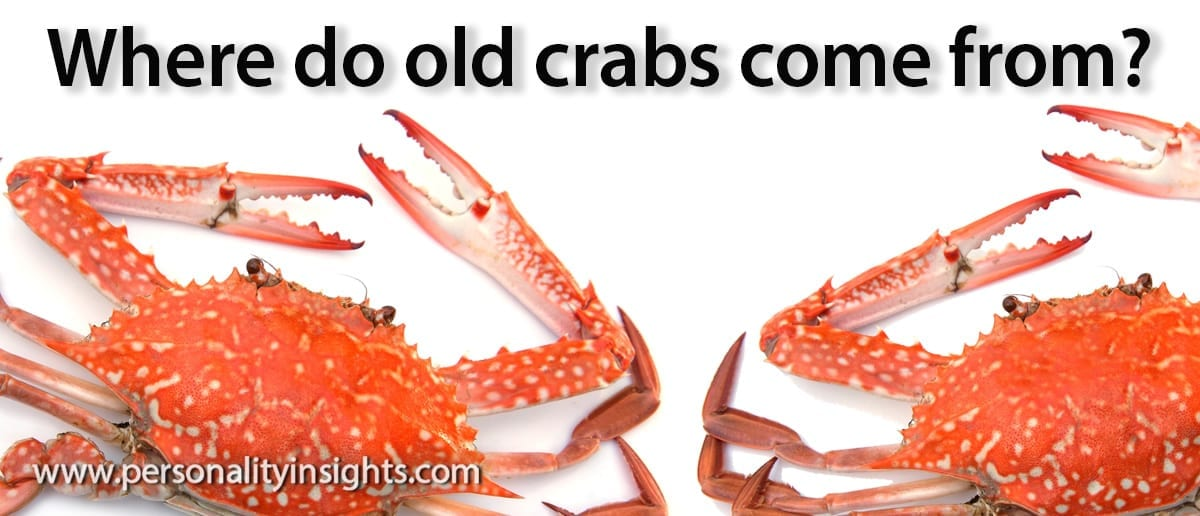 Tip: Where do old crabs come from?