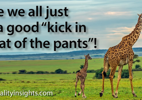 """Tip: Maybe We All Just Need A Good """"kick In The Seat Of The Pants""""!"""