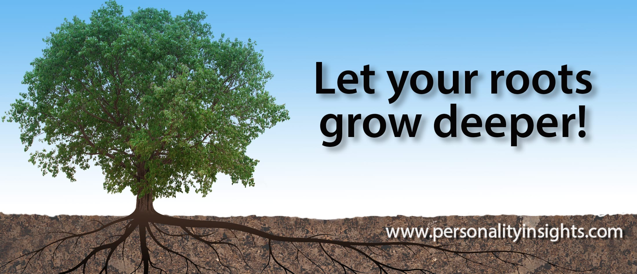 Tip: Let Your Roots Grow Deeper!