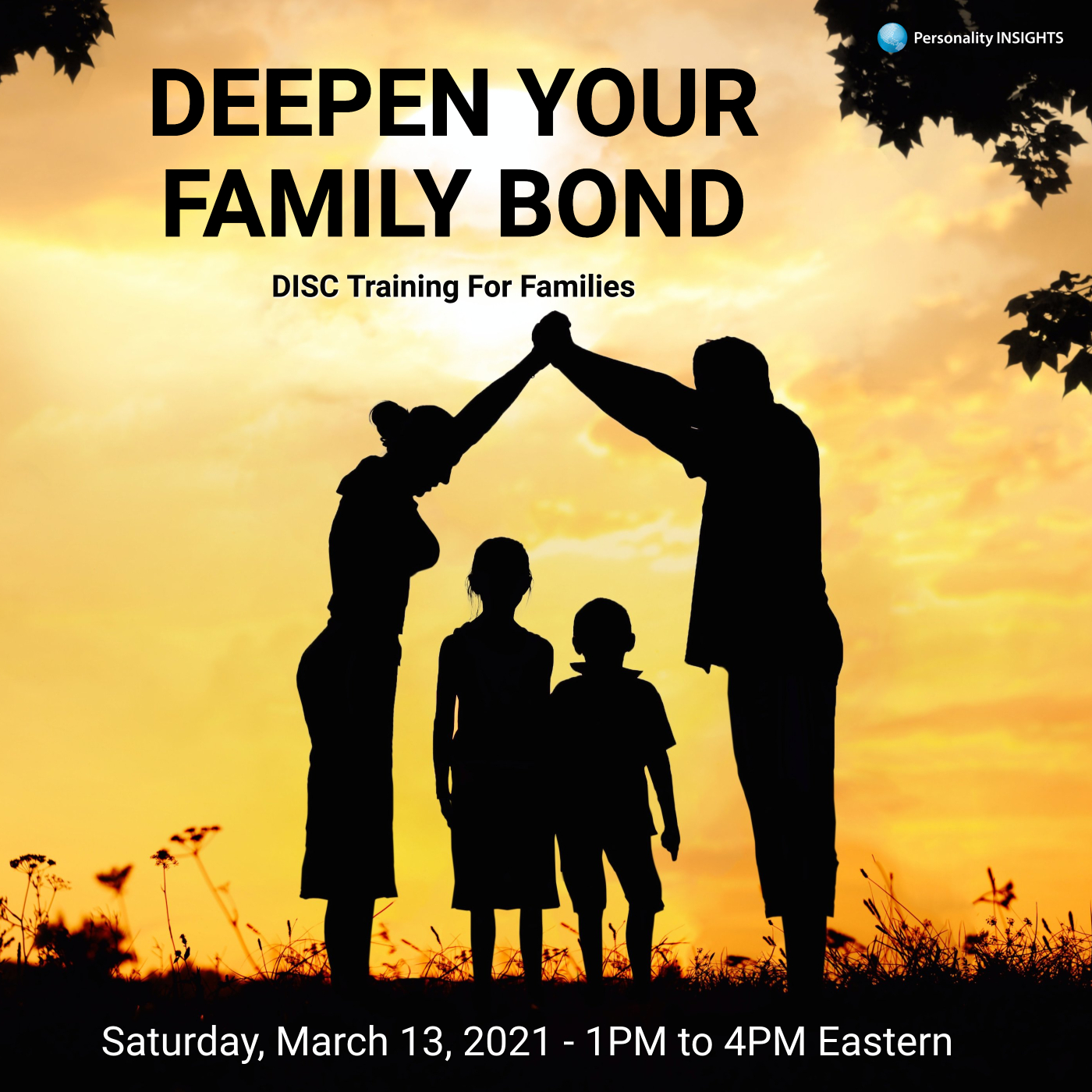 Family DISC Training (Live Virtual Class) – March 13, 2021